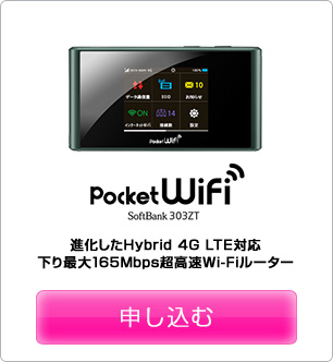 Pocket WiFi 303ZT