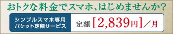 シンプルスマホ専用パケット定額サービス 定額料2,980円/月